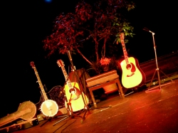 Guitars_McGuinn1